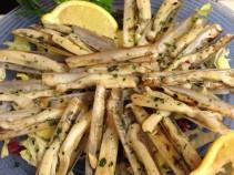 Appetizer cannolicchio