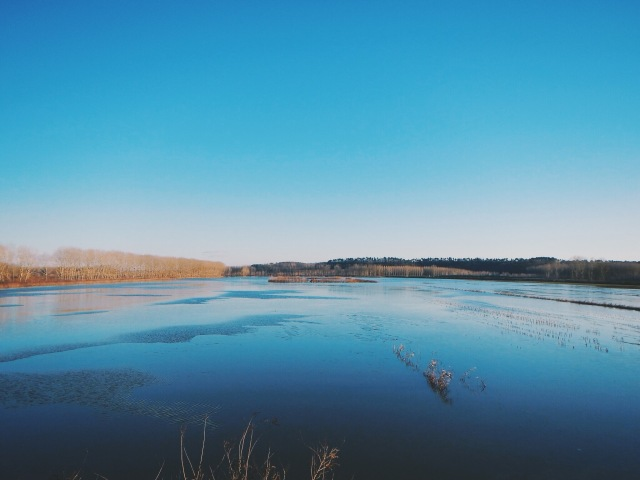Flat and quiet waterland. Can't really tell if it is iced or not.