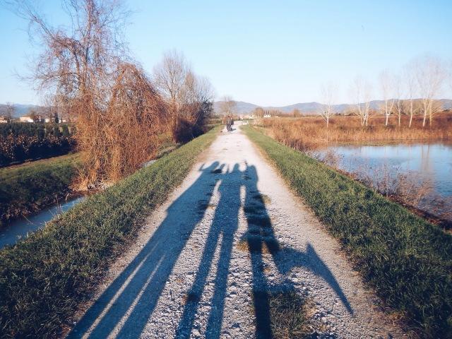 post 59 wetland 10