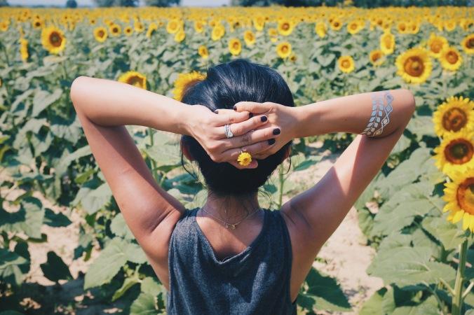 burying myself in sunflower ocean